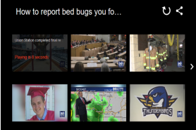 How To Report Bed Bugs You Find In Hotels