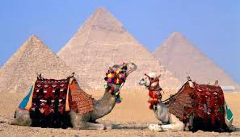 Egypt's Tourism Ministry approves 3-year exhibition abroad Travel And Tour World