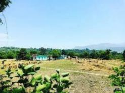 Sunal village in Udhampur is looking for sufficient infrastructure