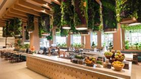 Hard Rock Punta Cana Unveils The Market Food Hall