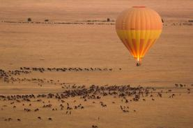 Kenya Tourism Board takes fresh European representation