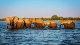 Remote and wild Zimbabwe with Great Plains