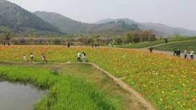China witnessing rural tourism boom despite Covid-19 pandemic