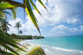 Travel businesses reluctant to renew ATOL licence