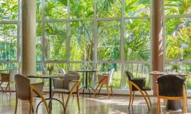Tapestry Collection by Hilton Brand Debuts in Brazil