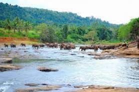 Sri Lanka has set the 5 year tourism revival plan