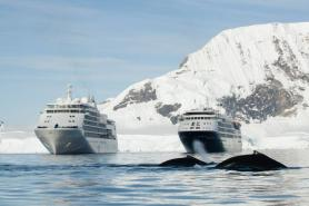 Expedition Cruise Players Bullish on Near-Term Recovery