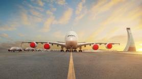 IATA calls for rapid reopening of global aviation